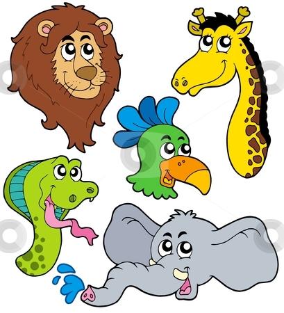 ZOO animals collection 6 stock vector clipart, ZOO animals collection 6 - vector illustration. by Klara Viskova