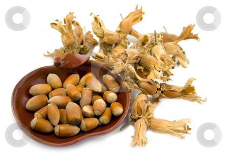 Hazelnuts stock photo, Hazelnuts isolated on white background by Minka Ruskova-Stefanova