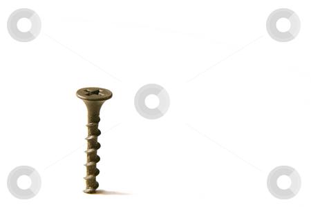 The Screw stock photo, Single Screw on te Left by Mehmet Dilsiz