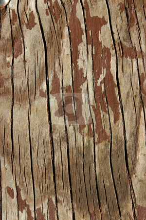 Wooden Background stock photo, Close up on Wooden Table by Mehmet Dilsiz
