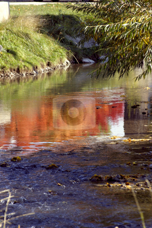 Reflection on the Creek stock photo, Tree Reflections on the Creek by Mehmet Dilsiz