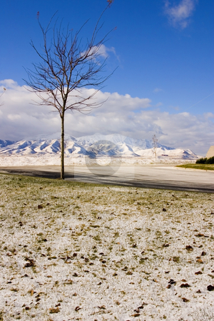 Winter with the Snow, Tree and the Mountains stock photo, Winter Time by Mehmet Dilsiz