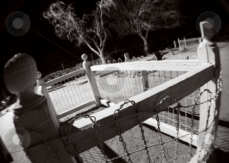 Don't Fence Me In stock photo, A fence around each grave guards against curious wild animals in a cemetery dating from