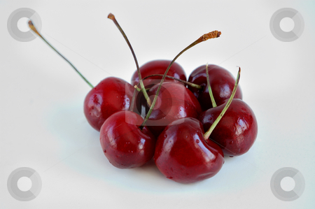 Cherries stock photo, Red cherries over a white background by ALESSANDRO TERMIGNONE