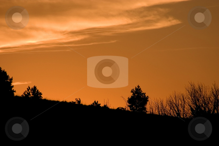 Silhouette of Bushes on the Mountain stock photo, Silhouette of Bushes on the Mountain - Sunset by Mehmet Dilsiz