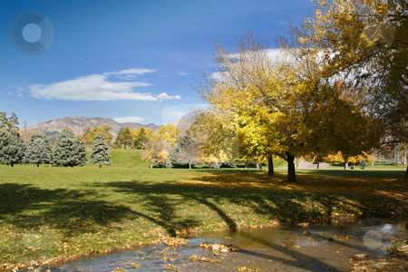 Park, Trees and Clear Skies stock photo, View to the park with a stream, trees and skies by Mehmet Dilsiz