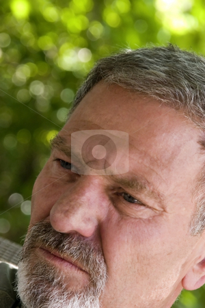 Man Looking Away at an Angle stock photo, Man with Gray Hair and Goatie Looking Up at an Angle by Mehmet Dilsiz