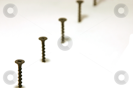 Screws in Line stock photo, Screws in Line with focus on the first by Mehmet Dilsiz