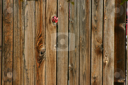 Background - Wood Fence stock photo, Wooden Fence as a background by Mehmet Dilsiz