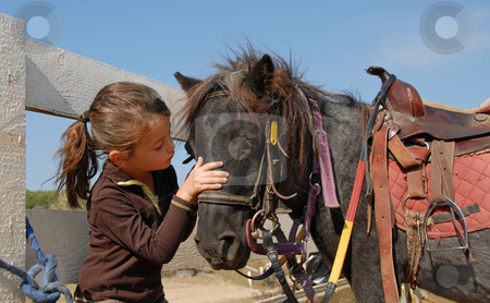 Little girl and shetmand stock photo, Little girl and her best friend pony shetland by Bonzami Emmanuelle