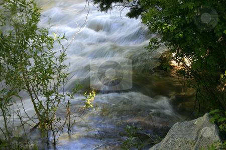 River stock photo, Flowing water in River by Mehmet Dilsiz