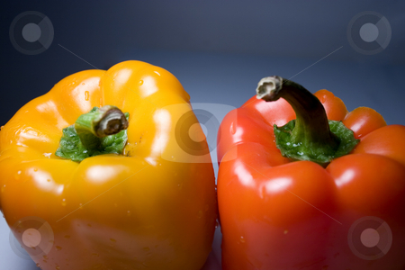 Isolated Orange and Yellow Peppers stock photo, Isolated Yellow and Orange Pepper on a Blue White Background by Mehmet Dilsiz