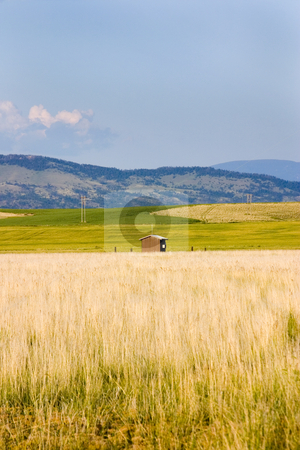 Field in Helena with a Shed and Mountains on the Background stock photo, Field in Helena Montana with bushes and Mountains on the Background by Mehmet Dilsiz