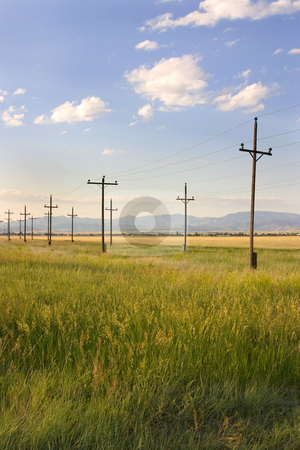 Field in Helena with Clouds and Blue Skies stock photo, Field with Electric Poles in Helena Montana by Mehmet Dilsiz