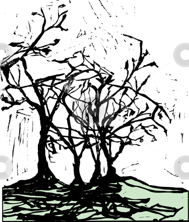 Harsh Trees and Shadows stock vector clipart, Harsh shadows of trees in the style of a woodcut. by Jeffrey Thompson