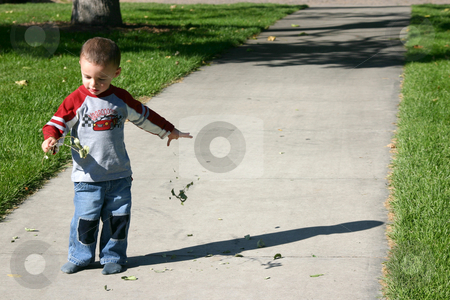 Tearing off the Leaves stock photo, Boy tearing off the leaves by Mehmet Dilsiz