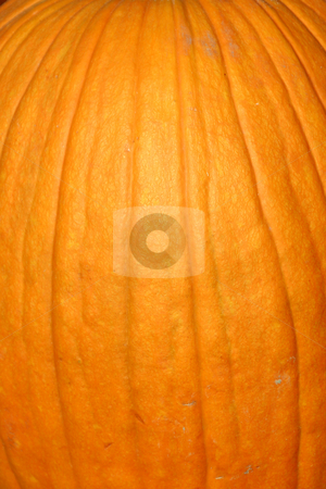 Up Close - Pumpkin stock photo, Close up on a Pumpkin Texture by Mehmet Dilsiz