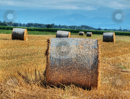 Countryside landscape stock photo, Countryside landscape of a beautiful freshly cut wheat field with haystacks  with mountains in the background hdr processed by Laurent Dambies