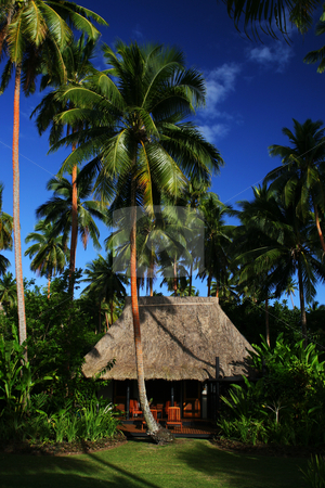 Fiji Hut stock photo,  by Rhys Marsh