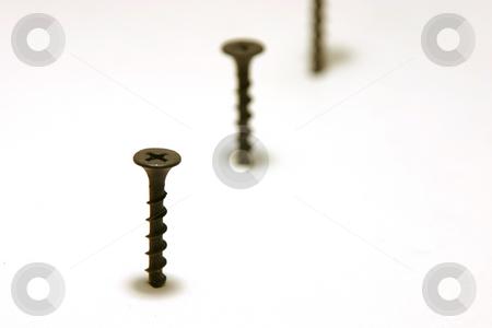 Screws in Line stock photo, Screws in Line with focus in the front by Mehmet Dilsiz