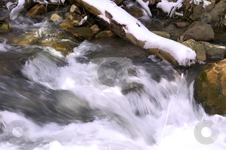 River during Spring stock photo, Flowing water in River with Snow on a Branch by Mehmet Dilsiz