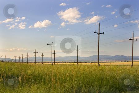 Electric Posts in a Field - Helena stock photo, Field with Electric Poles in Helena Montana by Mehmet Dilsiz