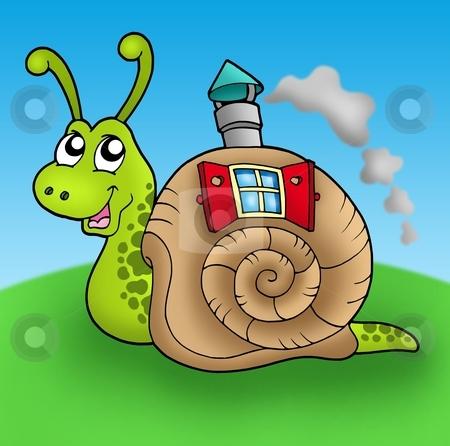 Snail with shell house on meadow stock photo, Snail with shell house on meadow - color illustration. by Klara Viskova