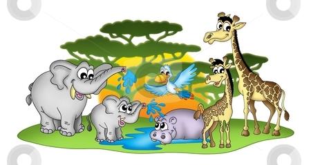 Group of African animals stock photo, Group of African animal - color illustration. by Klara Viskova