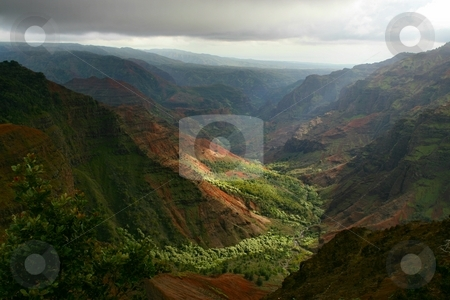Waimea Canyon stock photo,  by Rhys Marsh
