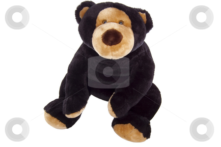 Teddy bear, sitting, isolated on white stock photo, Brown cuddly teddy bear sitting isolated on white. by Jeff Carson