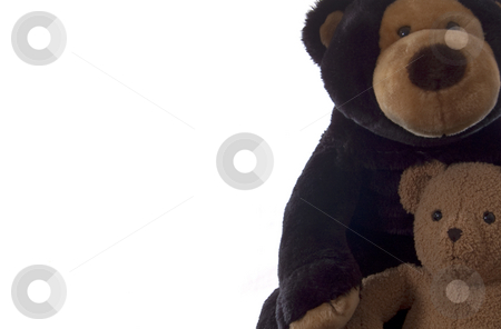Teddy bears with copy space stock photo, Two teddy bears with copy space, cropped, isolated on white. by Jeff Carson
