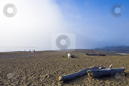 Cambria Fog Bank stock photo, Fog rolls over a California beach with strollers and driftwood by Bart Everett
