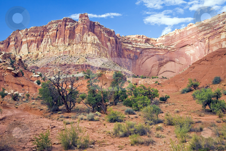 Capitol Reef Bluff Wide stock photo, Rocky Bluff rises high above a wash in Capitol Reef National Park, Utah by Bart Everett