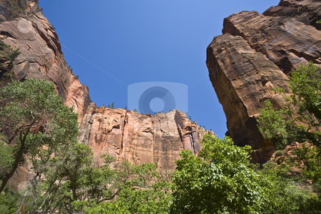 Zion Bluffs stock photo, Zion bluffs soar in stark contrast to a deep blue sky by Bart Everett