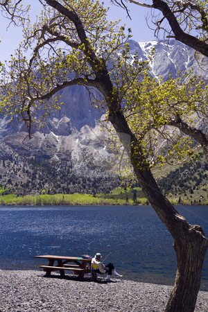 Convict Lake Fisherman stock photo, Man Fishing from picnic table at Convict Lake, CA. by Bart Everett