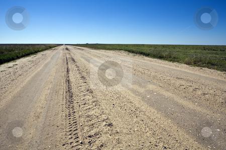 Kansas Farm Road stock photo, Graded dirt and gravel road runs straight across Kansas farmlands. by Bart Everett