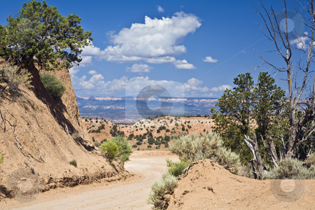 Escalante Dirt Road stock photo, Dirt road winds through deset brush in Grand Staircase-Escalante National Monument, Utah by Bart Everett