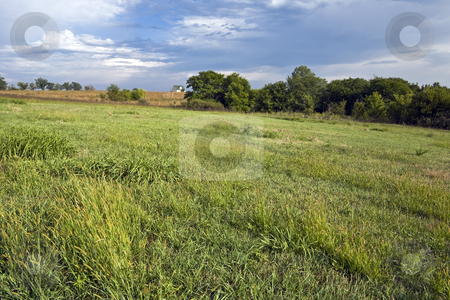 Kansas Farmhouse stock photo, Grass fields and trees surround a Kansas farmhouse under a cloud-streaked sky by Bart Everett