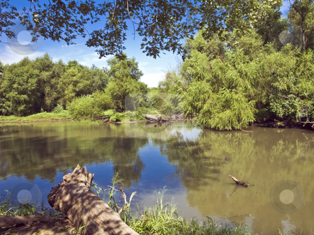 Kansas Wilderness Area stock photo, Wilderness surrounds an arm of Clinton Lake in Kansas by Bart Everett