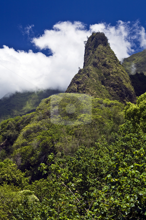 Iao Needle stock photo, Maui's Iao Needle soars to the clouds among tropical foliage. by Bart Everett