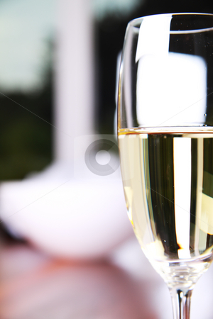 Glass of champagne stock photo, Close-up of a champagne glass on a mahoney table by Daniel Kafer