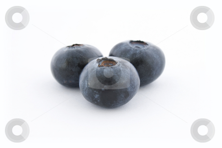 Three blueberries stock photo, Three blueberries isolated on white background, with shadow. by Natalia Banegas