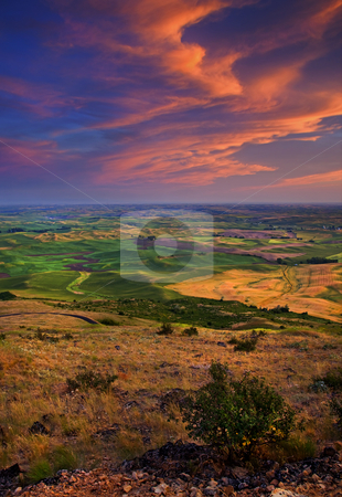 Palouse Skies Ablaze stock photo, Sunset Skies ablaze in color over the rolling hills of the Palouse in Eastern Washington by Mike Dawson