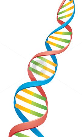 Double Helix DNA Strand stock vector clipart, Vector illustration of a Double Helix DNA Strand. by John Schwegel