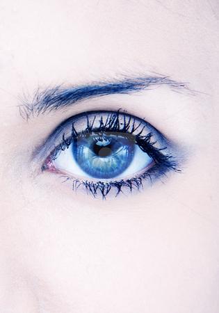Beauty eye stock photo, Human macro beauty eye in blue by Piotr Stryjewski
