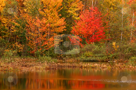 Autumn in New Hampshire  stock photo,  by Marianne Dent