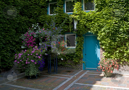 Beautiful flowers stock photo, Beautiful flowers and a blue door in a place in Germany, Kevelaer by Chris Willemsen