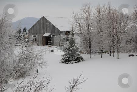 Winter scene stock photo, Winter scene showing fresh snow in a back country field by Alain Turgeon