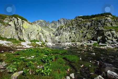 Mountain creek and ridge stock photo, Mountain creek with ridge in background by Juraj Kovacik