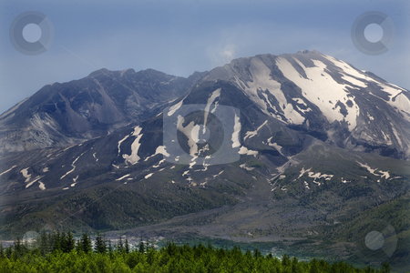 Close Up Mount Saint Helens National Park Washington stock photo, Close Up Mount Saint Helens Volcano National Park Washington Green Trees in Foreground by William Perry